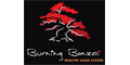 Burning Bonzai menu and coupons
